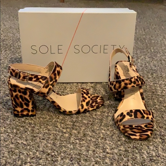 Sole Society Shoes | Jessibel Leopard